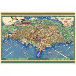 Puzzle  Pomegranate-AA737 USA, Chicago : Carte de la ville
