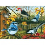 Puzzle  Cobble-Hill-51661 Blue Jay and Friends