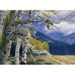 Puzzle  Cobble-Hill-51712 Al Agnew : Chouette lapone