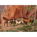 Puzzle  Cobble-Hill-51732 Chris Cummings : Le Canyon des Chevaux