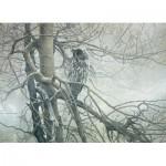 Puzzle  Cobble-Hill-51769 Robert Bateman : Le Fantôme du Nord