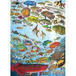 Puzzle  Cobble-Hill-51794 Poissons Tropicaux