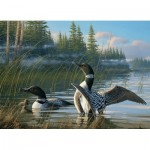 Puzzle  Cobble-Hill-51810 Michael Sieve - Common Loons