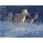 Puzzle  Cobble-Hill-52100 Pièces XXL - Daniel Smith - White Gold Wolves