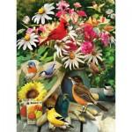 Puzzle  Cobble-Hill-52101 Pièces XXL - Greg Giordano - Garden Birds
