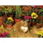 Puzzle  Cobble-Hill-52108 Pièces XXL - Autumn Breeze