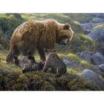 Puzzle  Cobble-Hill-54584 Robert Bateman : Le Grizzly et ses Oursons