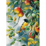 Puzzle  Cobble-Hill-57172 Northern Oriole