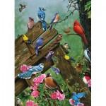 Puzzle  Cobble-Hill-57190 Oiseaux de la Forêt