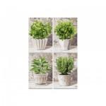 Puzzle  Noris-6060-38020 4 x 200 Pièces - Herbes