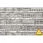Puzzle  Piatnik-5434 Notes de musique