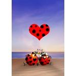 Puzzle  Grafika-Kids-00833 François Ruyer: Love