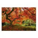 Puzzle  Educa-16310 Jardin Japonais