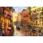Puzzle  Educa-17124 Dominic Davison, Sunset in Venice