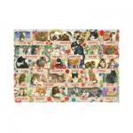 Puzzle  Jumbo-18324 Anniversaire de Chats