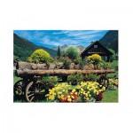 Puzzle  Jumbo-18335 Fleurs des Alpes