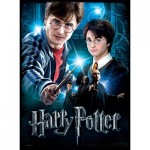 Wrebbit-3D-5002 Poster Puzzle - Harry Potter