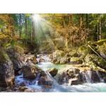 Puzzle  Castorland-200382 Ruisseau dans la forêt
