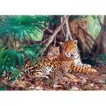 Puzzle  Castorland-300280 Jaguars dans la jungle