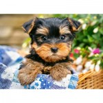 Puzzle  Castorland-30187 Puppy on a Picnic