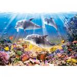 Puzzle  Castorland-51014 Dauphins sous l'eau