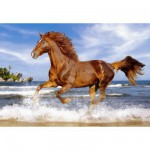 Puzzle  Castorland-51175 Cheval sur la plage
