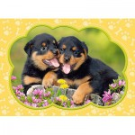 Puzzle  Castorland-B-035205 Pièces Mini - Chiots Rottweilers