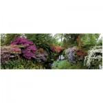 Puzzle  Heye-29473 Le jardin de Bodnant