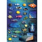 Puzzle  Eurographics-6000-1170 Recife corallien