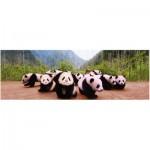 Puzzle  Eurographics-6005-0309 Petits pandas