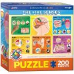 Puzzle  Eurographics-6200-0305 Les 5 Sens