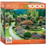 Puzzle  Eurographics-8000-0700 Butchart Gardens, Sunken