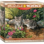 Puzzle  Eurographics-8000-0796 Deux Fois plus d'Ennuis