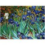 Puzzle  Eurographics-8104-4364 Van Gogh : Les Iris