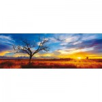 Puzzle  Schmidt-Spiele-59287 Mark Gray : Australie, Oak du désert au coucher du soleil