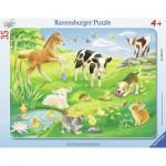Puzzle Cadre - Animaux dans le Pré 35 pièces - Ravensburger