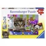 Puzzle  Ravensburger-08971 Amis à Quatre Pattes