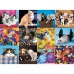 Puzzle  Ravensburger-13197 Pièces XXL - Collage de Chats