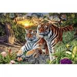 Puzzle  Ravensburger-17072 Tigres Cachés