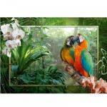 Puzzle  Ravensburger-19188 Perroquets dans la jungle