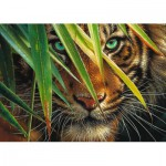 Puzzle  Ravensburger-19486 Tigre Mystérieux