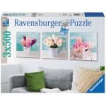 Ravensburger-19922 3 Puzzles - Décoration Florale