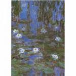 Puzzle  DToys-67548-CM06 Monet Claude - Nymphéas