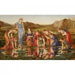 Puzzle  Dtoys-72733-BU-01 Edward Burne-Jones: Le Miroir de Venus, 1875