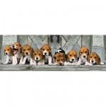 Puzzle  Clementoni-39076 Beagles