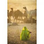 Puzzle  Clementoni-39302 National Geographic - Sari