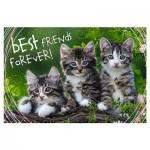 Puzzle  Trefl-13215 Pièces XXL - Best Friends Forever