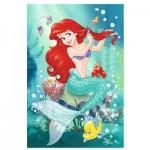 Puzzle  Trefl-14248 Pièces XXL - Disney Princess