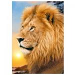 Puzzle  Trefl-37191 Lion