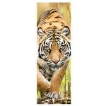 Puzzle  Trefl-75002 Tigre